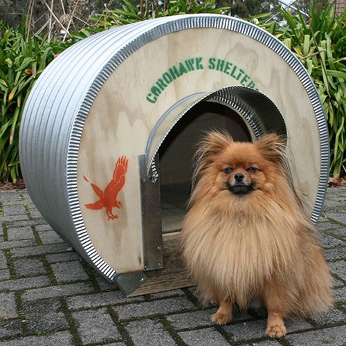 Dog Kennel - Toy Dogs